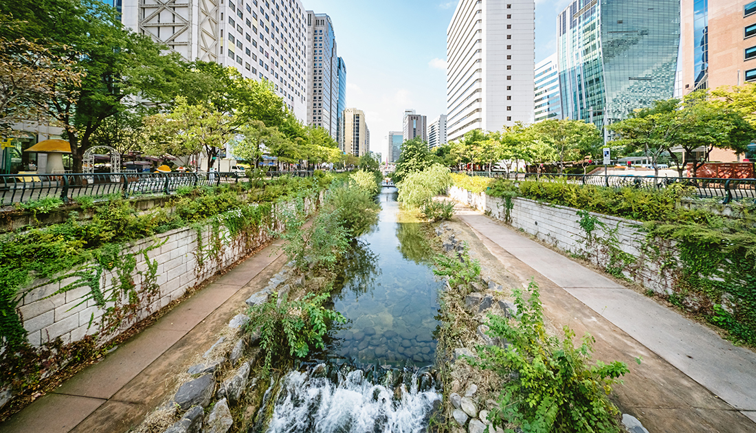 The picture shows a canal with clear water running through a city. There are plants growing along the water's edge, with a path on either side, and more shrubs and trees on top of walls by the paths. Further out from the canal, you can see there are roads, and then skyscrapers.