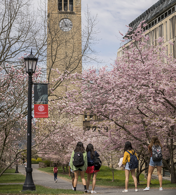 Cornell Spring 2020 Calendar.Fall Spring Study Courses Programs Courses For Credit